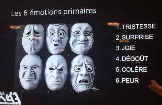 6-emotions-primaires