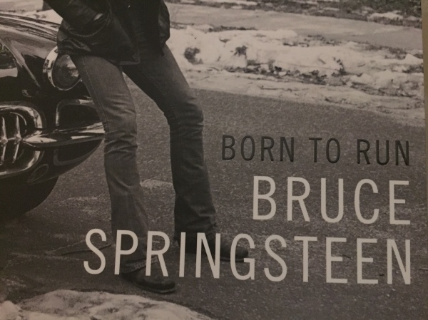 bruce-book